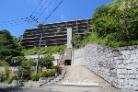 アデニウム鎌倉山